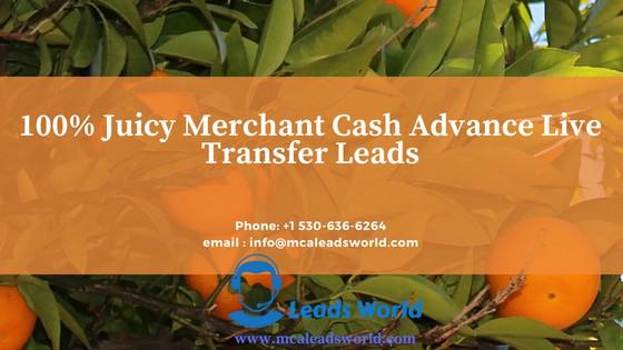 Merchant cash advance lead Live Transfers